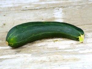 squash-green-bush-zuc